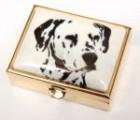 Lékovka obdélníková pes - dalmatin