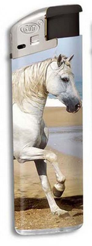 Zapalovač Horse head - kůň na pláži