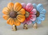 Plotovka - barevný květ