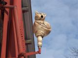 Plotovka kočka - budka pro sýkorky