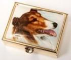 Lékovka obdélníková pes - kolie