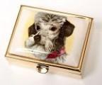 Lékovka obdélníková pes - pudl
