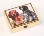 Lékovka obdélníková pes - zvědavá štěňata