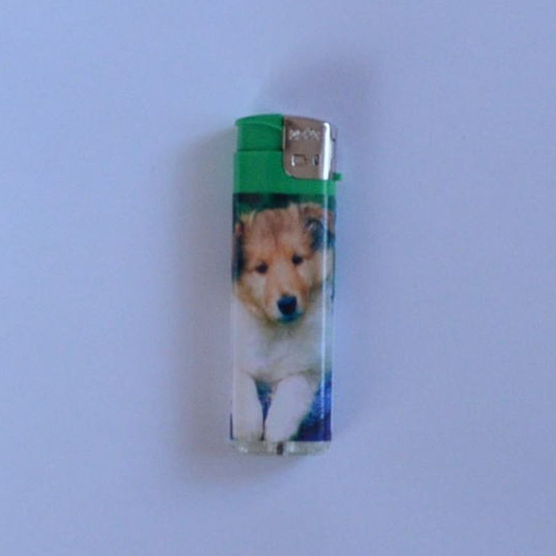 Zapalovač Happy Dog zelený