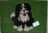 Rohožka bernský salašnický pes