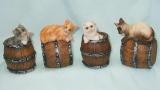Pokladnička kočka na sudu
