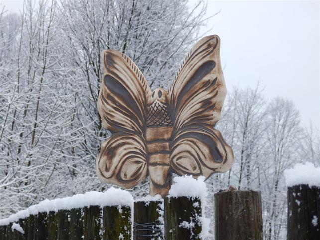 Plotovka - malý motýl