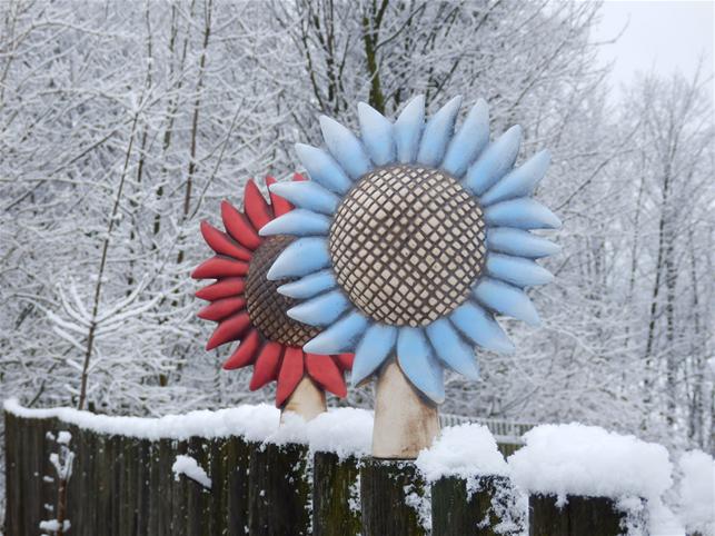 Plotovka - mikrofon v květu