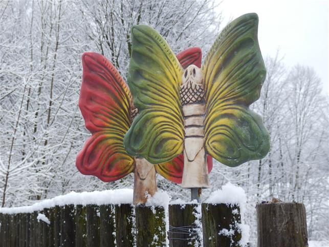 Plotovka - velký barevný motýl