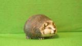 Soška malý ježek natur