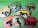 Keramická nástěnná ozdoba plaketa psa barevná