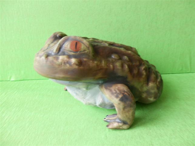 Soška žába velká