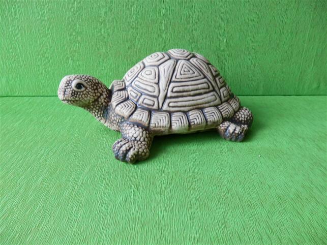 Soška želva
