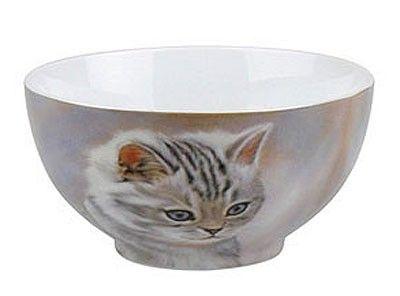Miska Tygrované kotě