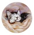 Talířek Spící kotě