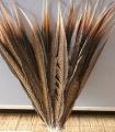 Ocasní pero z bažanta diamantového - přírodní  50-55 cm