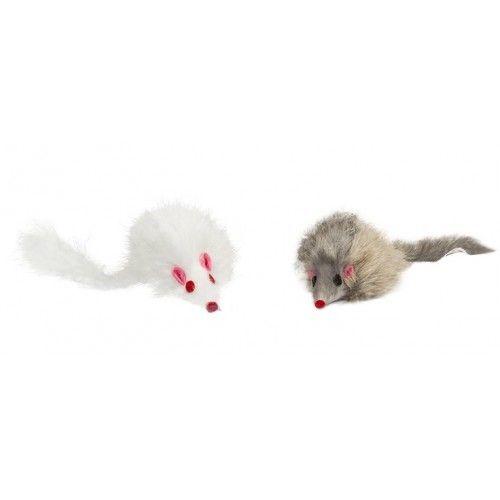 Chlupatá myš pro kočky