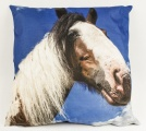 Koňský povlak na polštář - kůň s lysinou