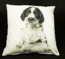Povlak na polštář - černobílý pes