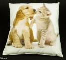 Povlak na polštář - pes a hravá kočka