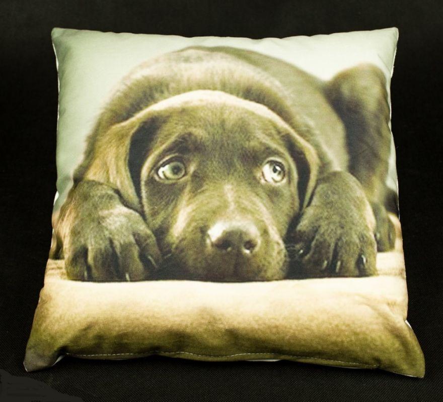 povlak na polštář smutný pes