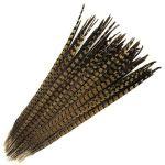 Ocasní pero z bažanta - přírodní 50 cm