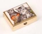 Lékovka kočičky obdélníková B