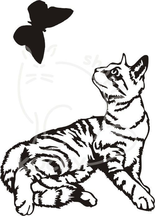 Samolepka kotě a motýl 0062