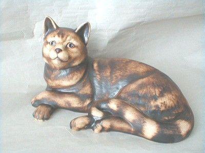 Kočka domácí hnědá