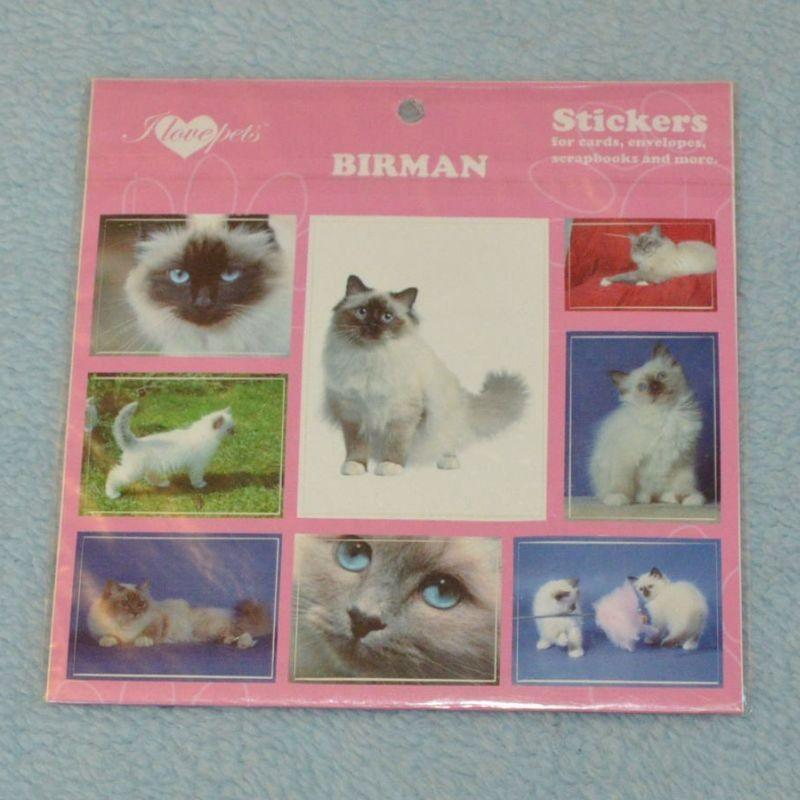 SAMOLEPKY BIRMAN - kočka Birma