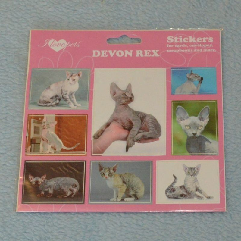 SAMOLEPKY DEVON REX - kočka Devon Rex