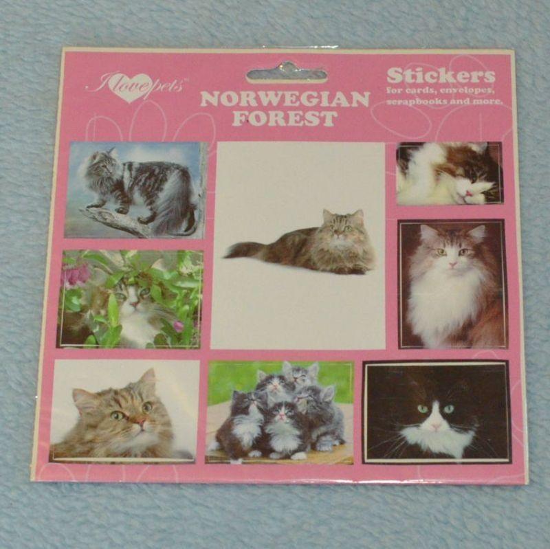 SAMOLEPKY NORWEGIAN FOREST - Norská lesní kočka