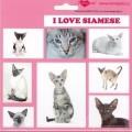 SAMOLEPKY SIAMESE - kočka siamská