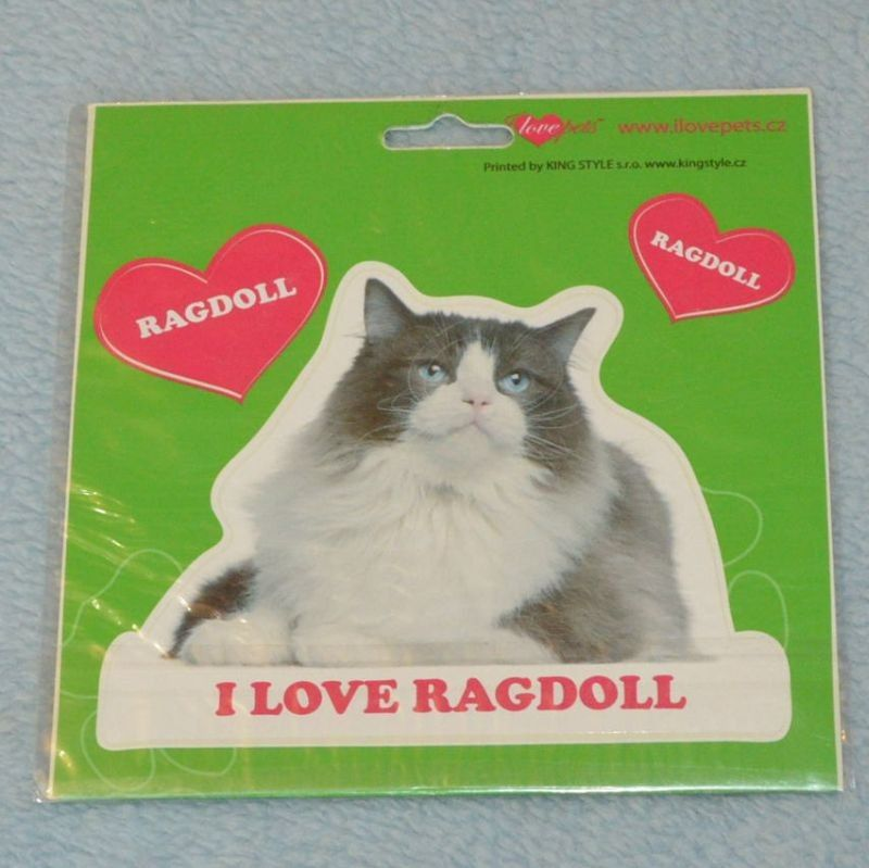 VELKÉ SAMOLEPKY RAGDOLL - kočka Ragdoll
