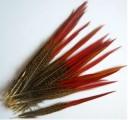 Ocasní pero ze zlatého bažanta - přírodní 25-30 cm