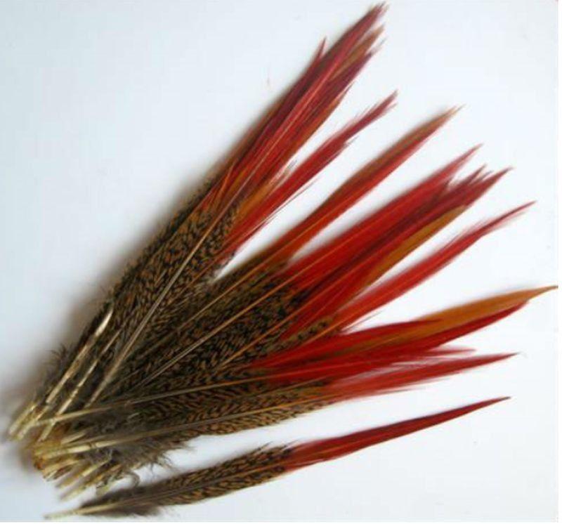 Ocasní pero ze zlatého bažanta - přírodní 22-25 cm